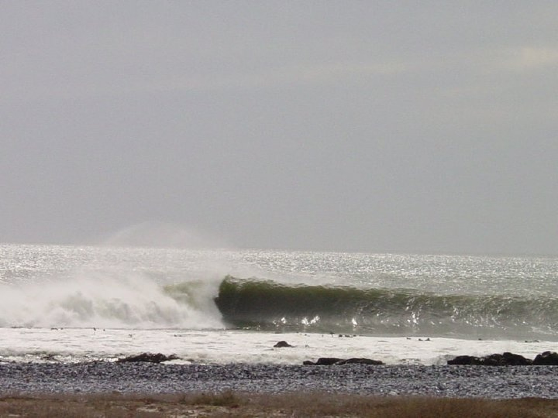 rumpiesSA's photo of Yzerfontein