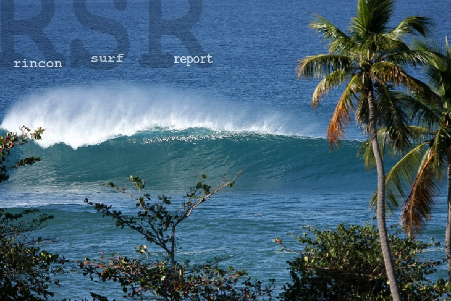 rinconsurfreport.com's photo of Sandy Beach - Puerto Rico