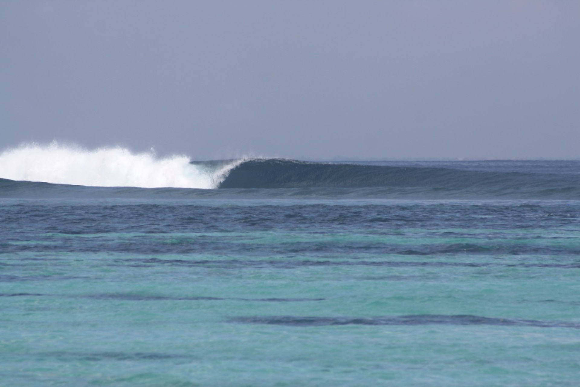 Coxa's photo of Shipwrecks - Lembongan