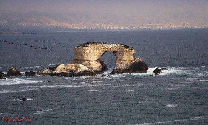 Peiiland's photo of La Puntilla (Antofagasta)