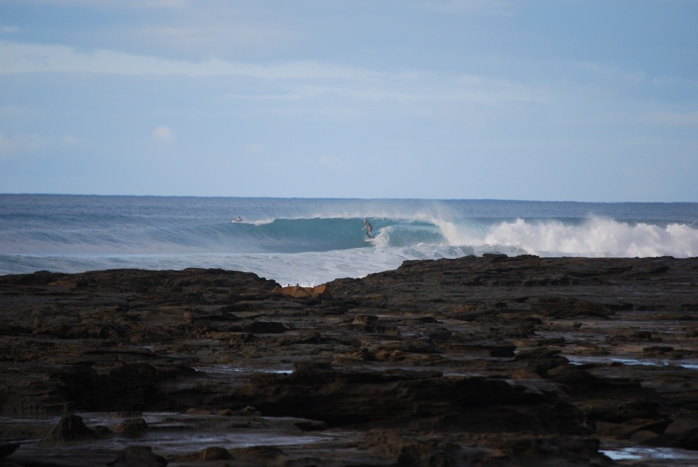 pavart's photo of Lorne