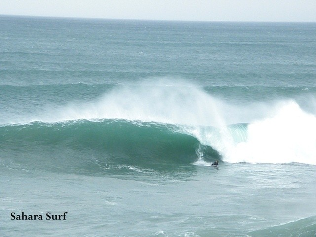 www.saharasurf.com's photo of Taghazout