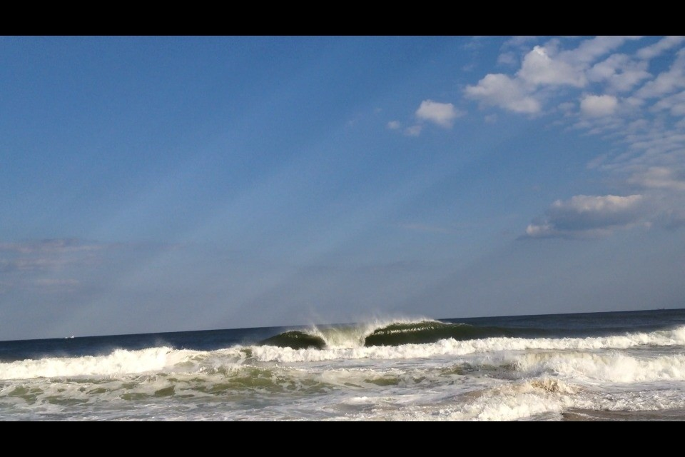 user133728's photo of Surf City