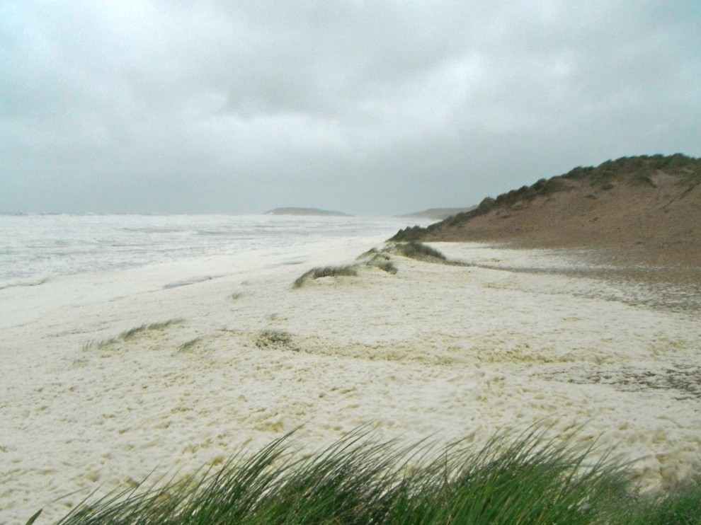 The Antidote's photo of Llangennith / Rhossili
