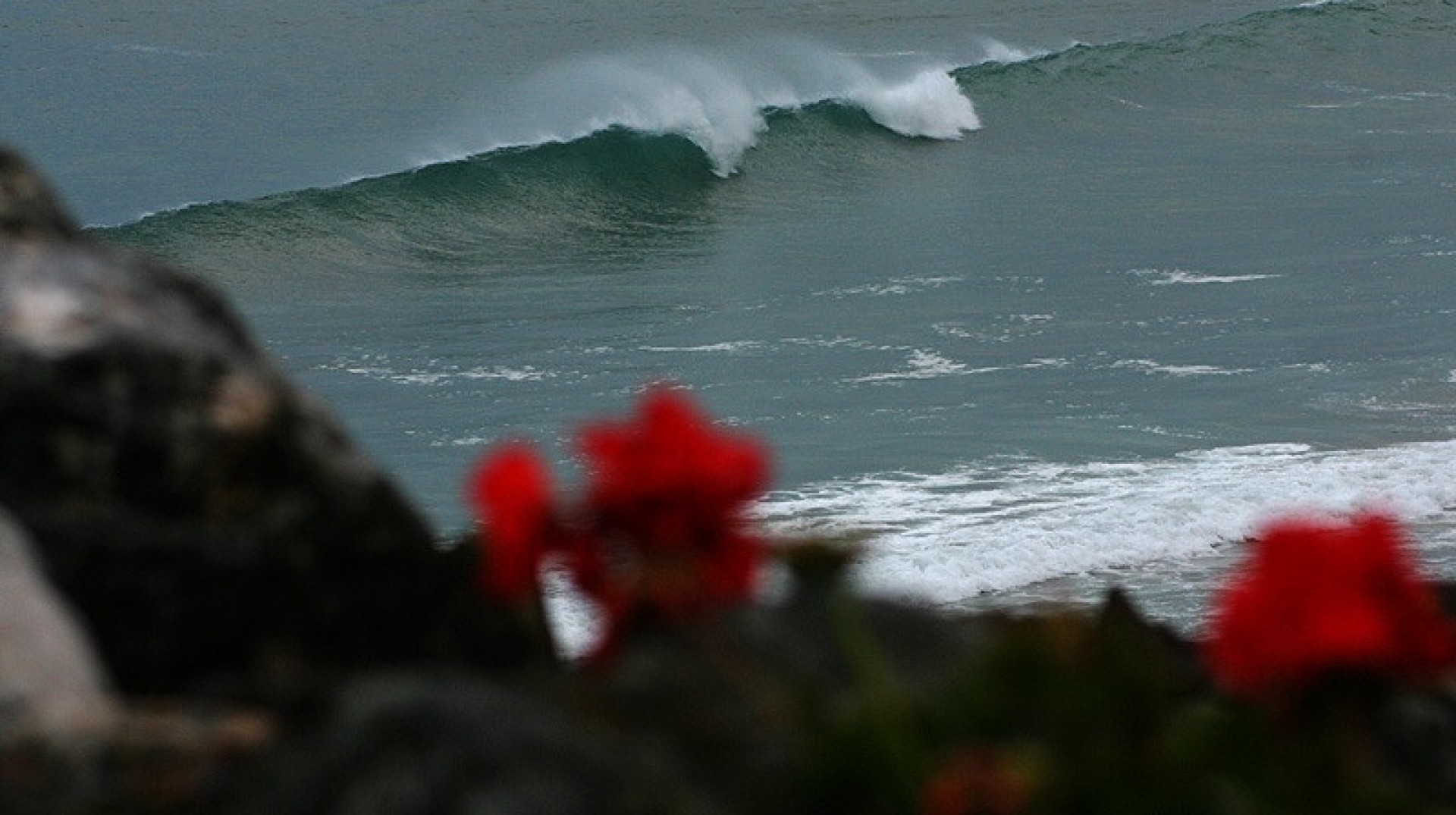 IanButs's photo of St Agnes