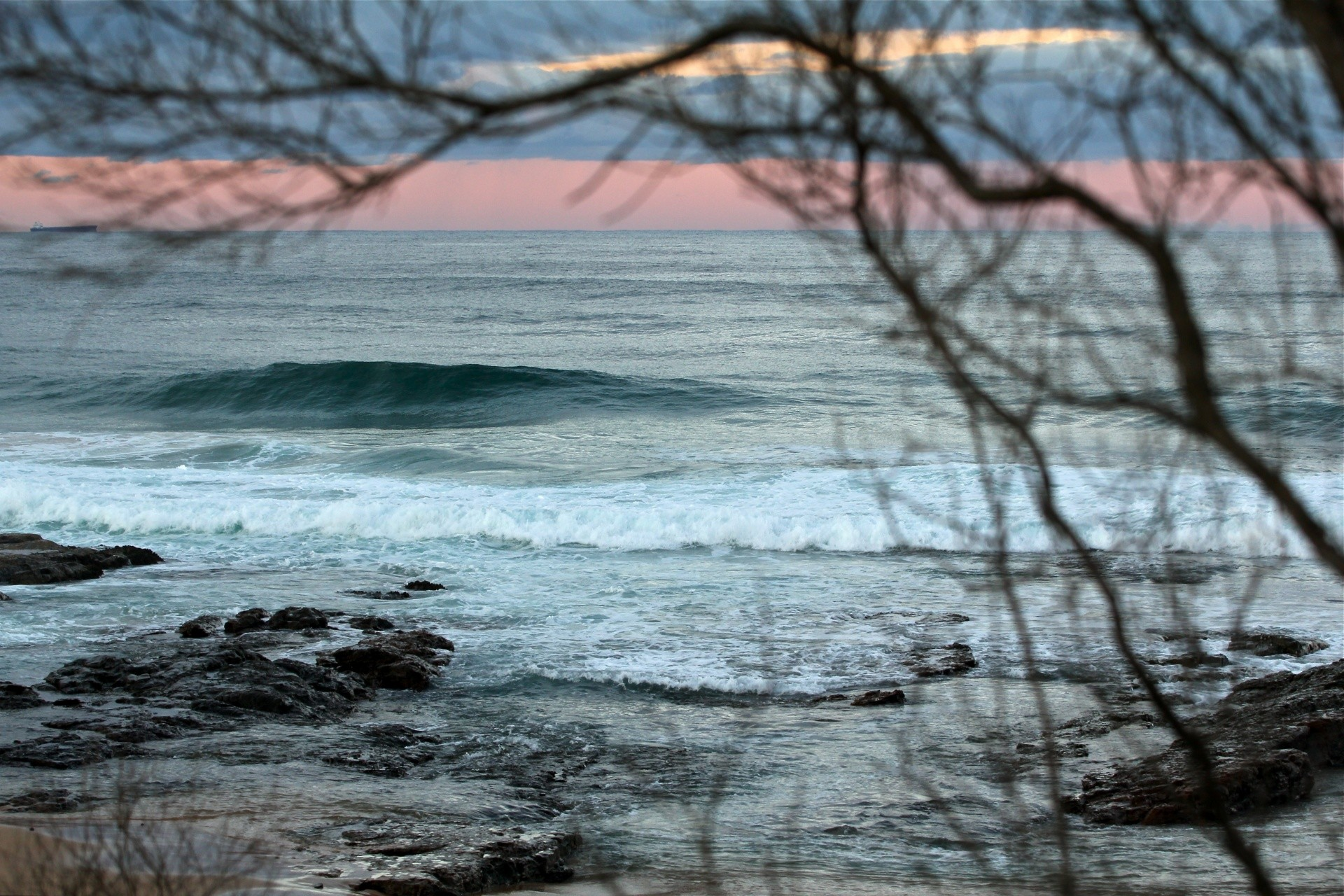 Julie Steele's photo of Wollongong