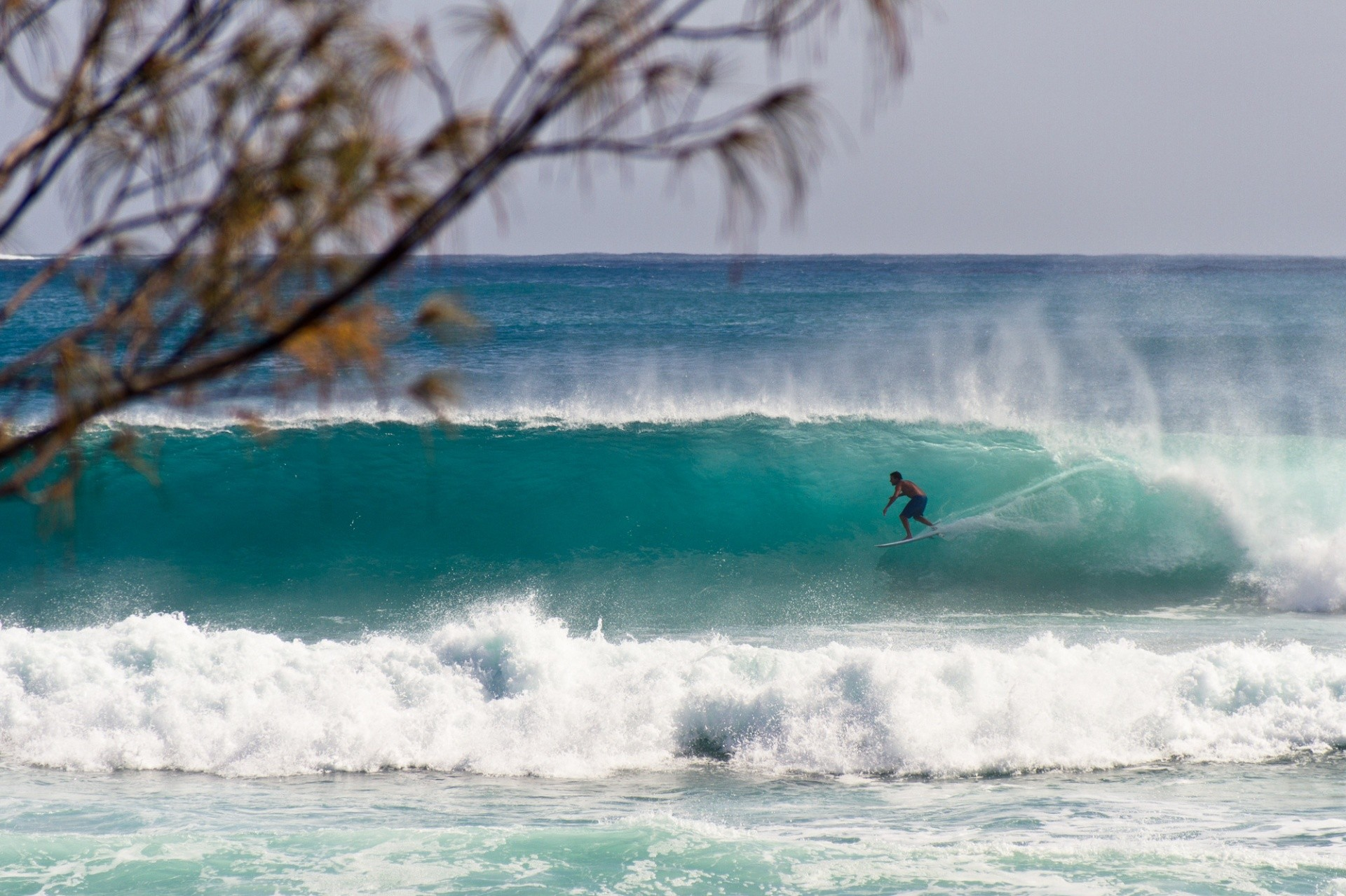 chris immler's photo of Byron Bay