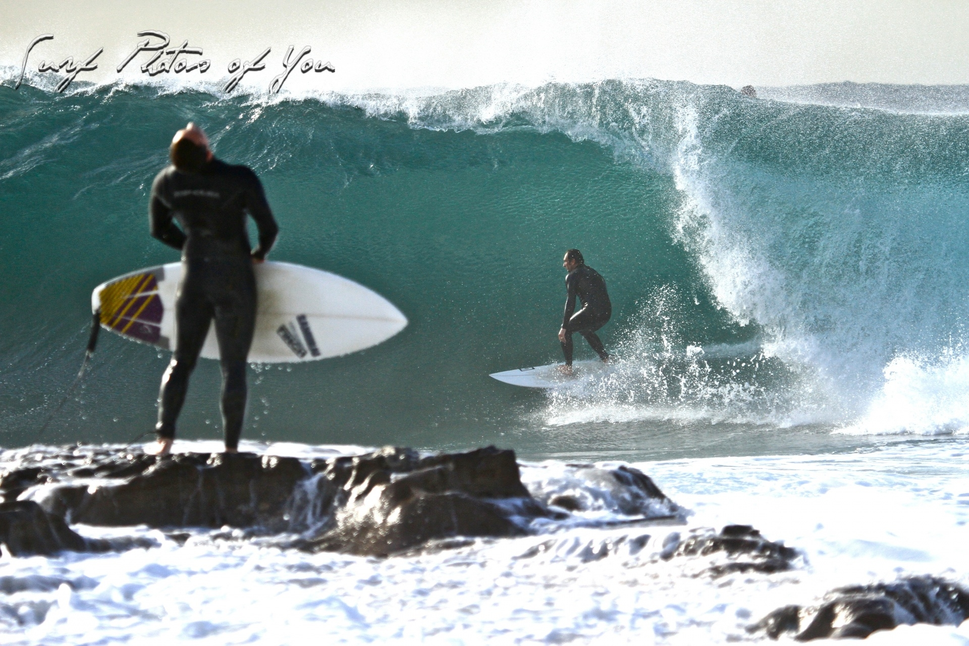 SPoY's photo of Dee Why Point