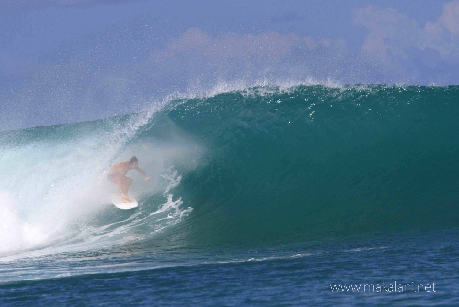Makalani Productions's photo of Macaronis