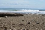Photo of Playa Dominical
