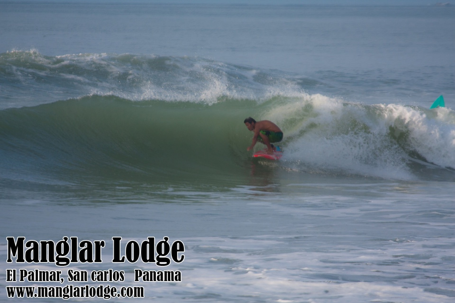 manglarlodge's photo of Punta Palmar (San Carlos)