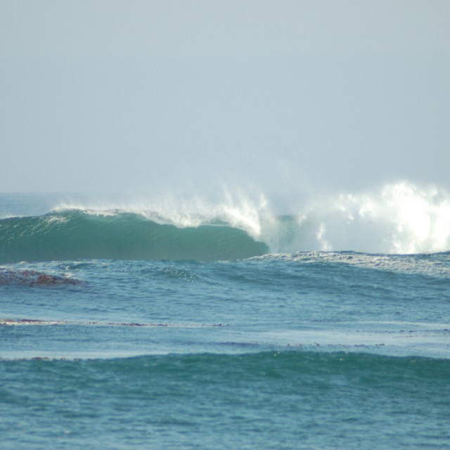 Photo of Wave Buoy 46047