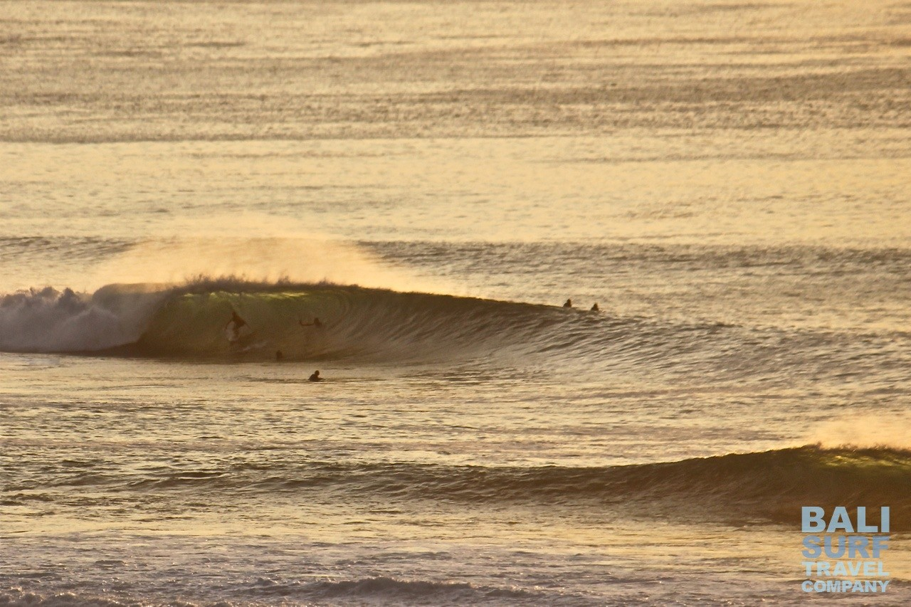 Bali Surf Travel Company's photo of Padang Padang