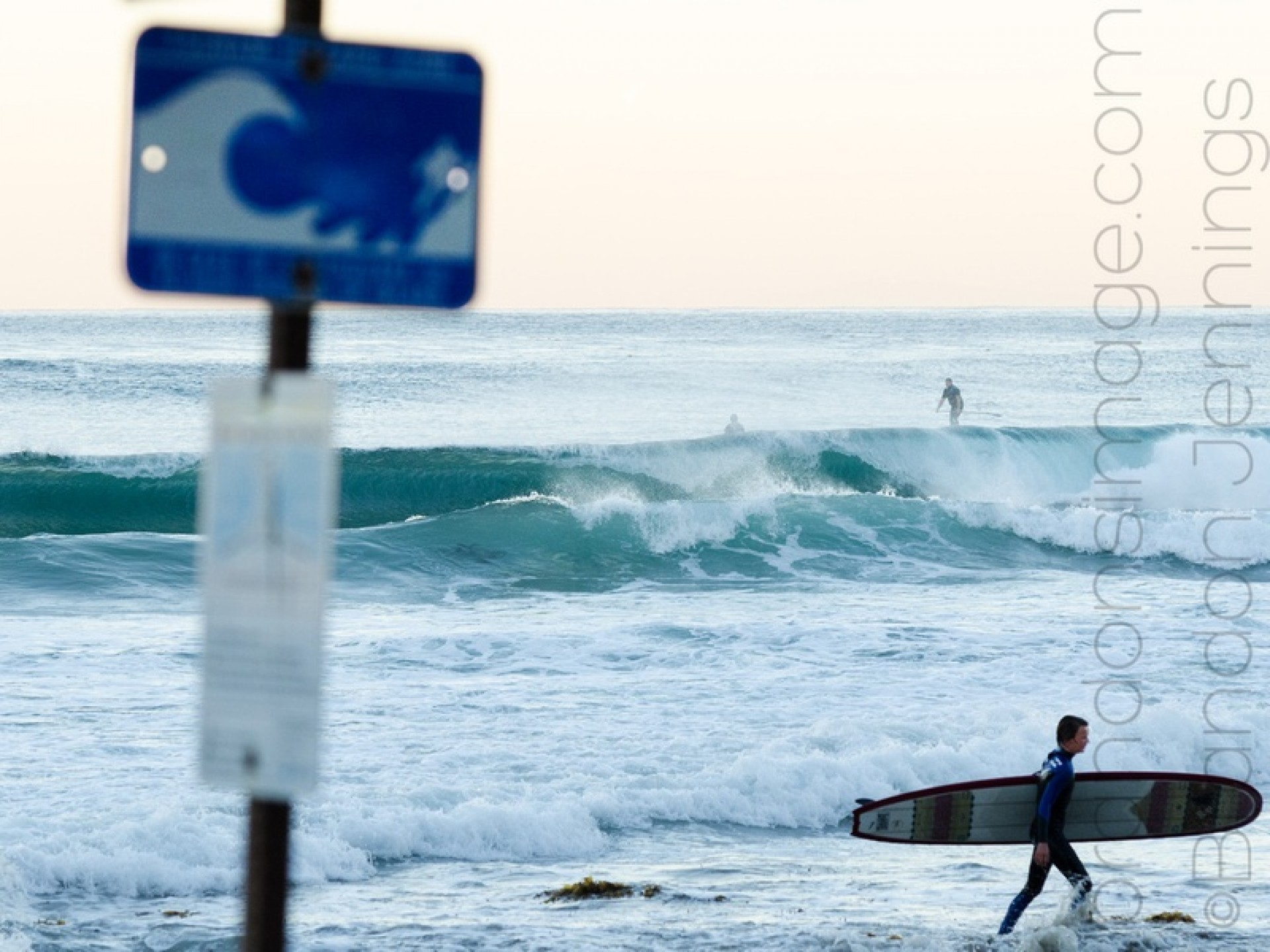Brandon Jennings's photo of Salt Creek