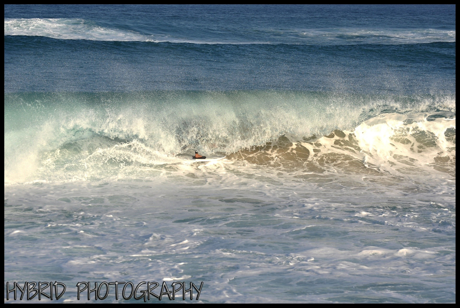 HybridPhotography's photo of Palm Beach