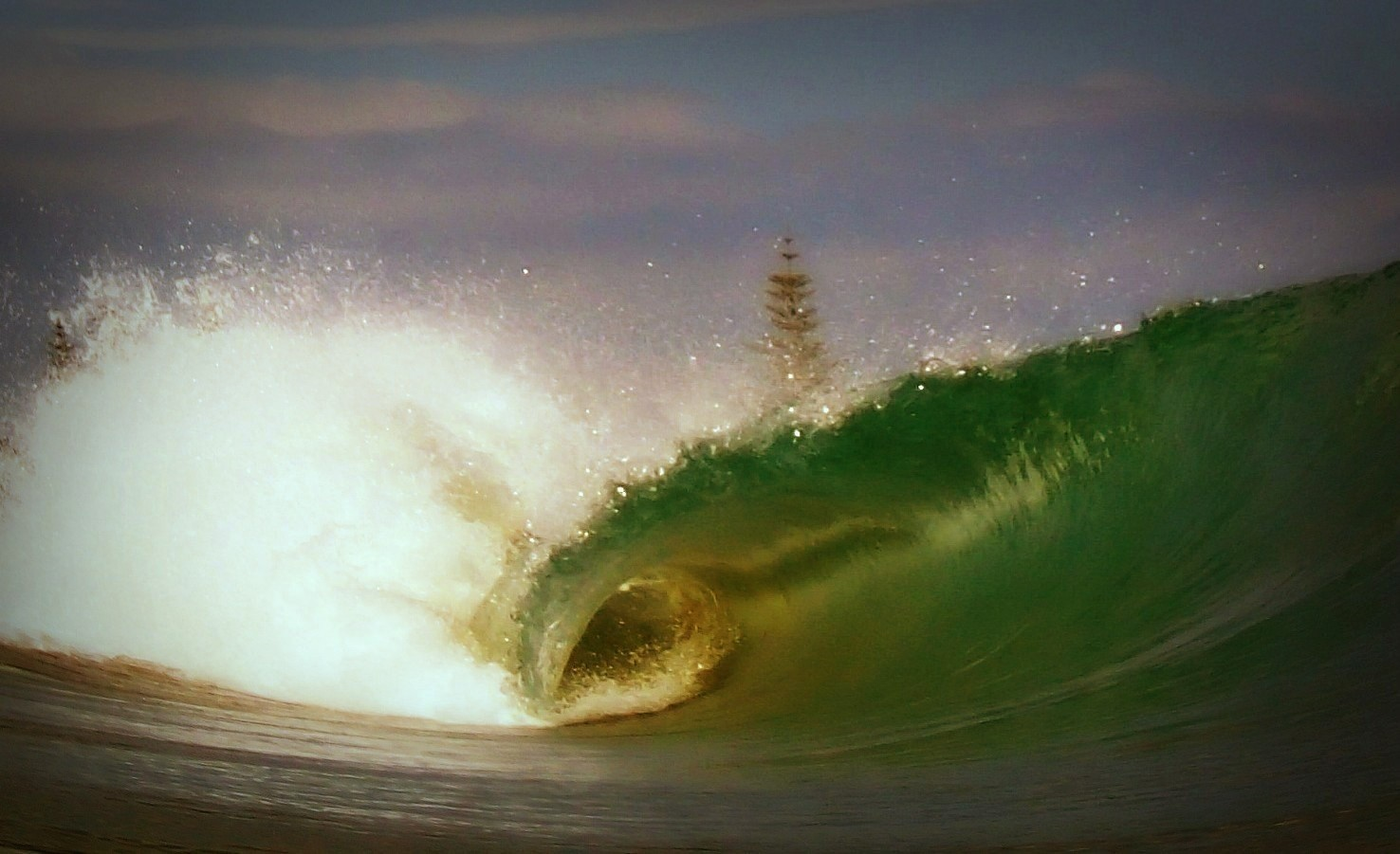 Tigerwould's photo of Gizzy Pipe (Gisborne)