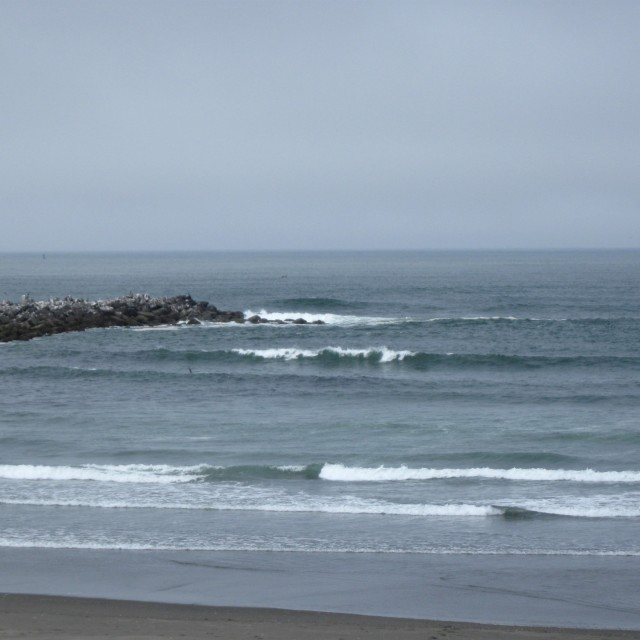 Photo of Ocean Shores