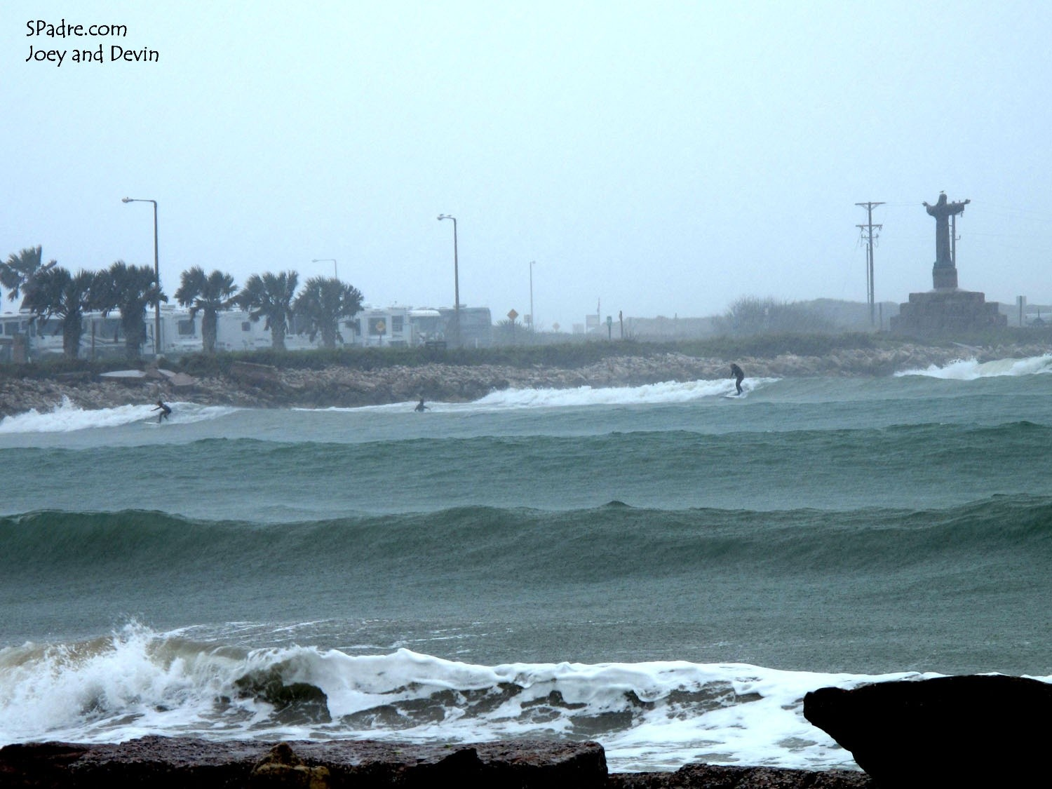 freestyle123's photo of South Padre Island