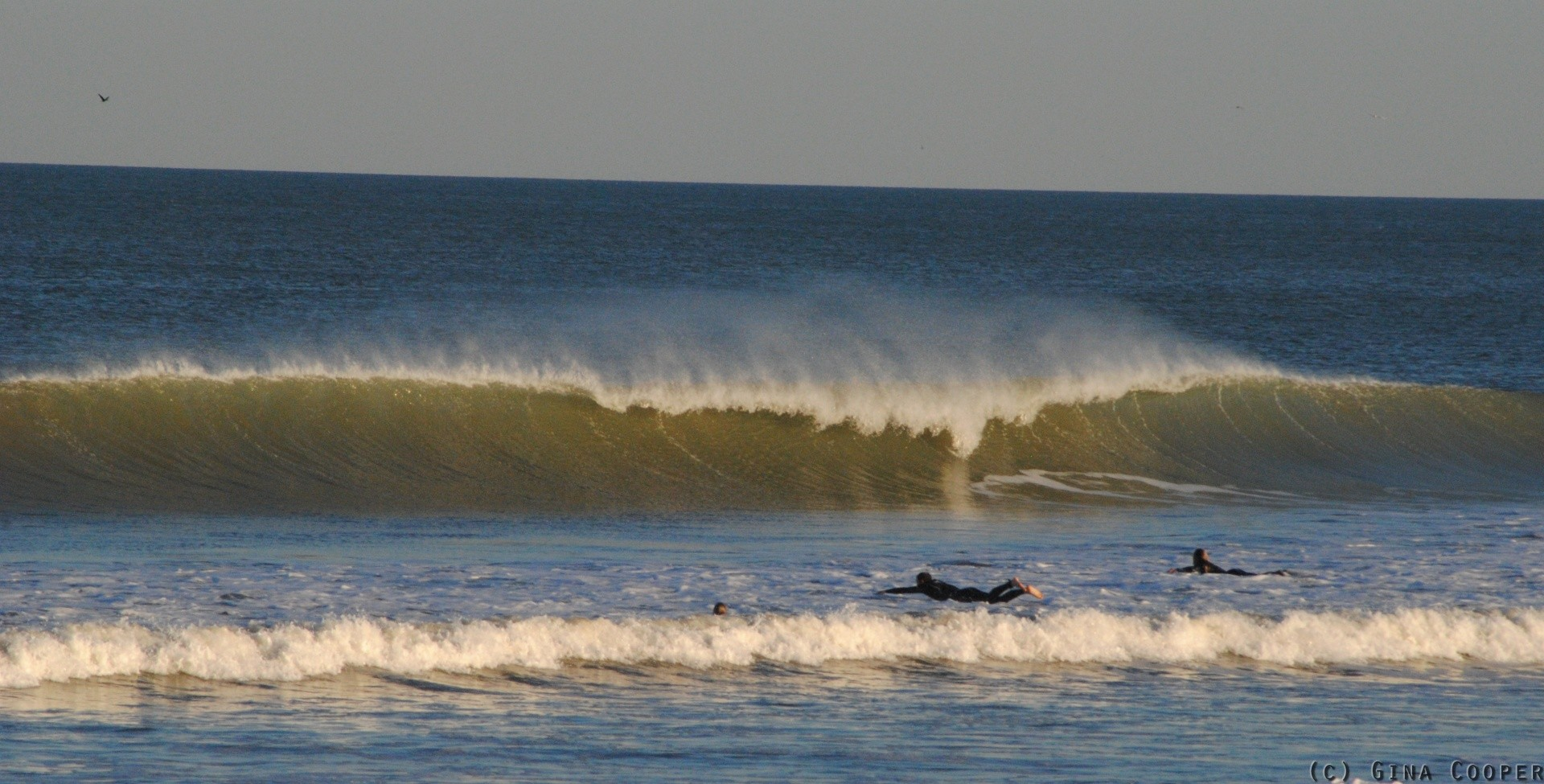ginacooper's photo of Jacksonville Beach