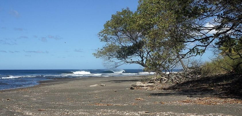 bradhersch's photo of Playa Negra - Guanacaste
