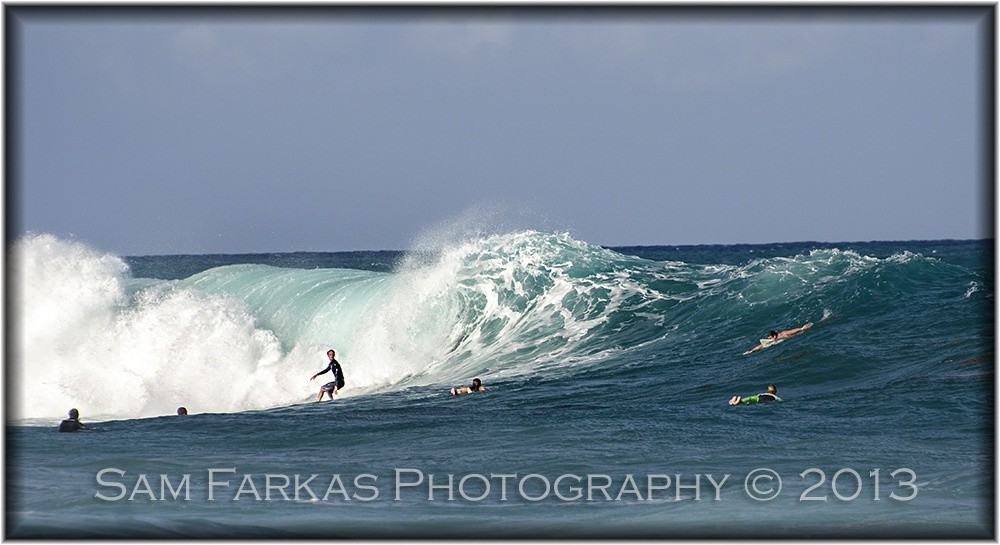 SamFarkasPhotography's photo of Palm Beach
