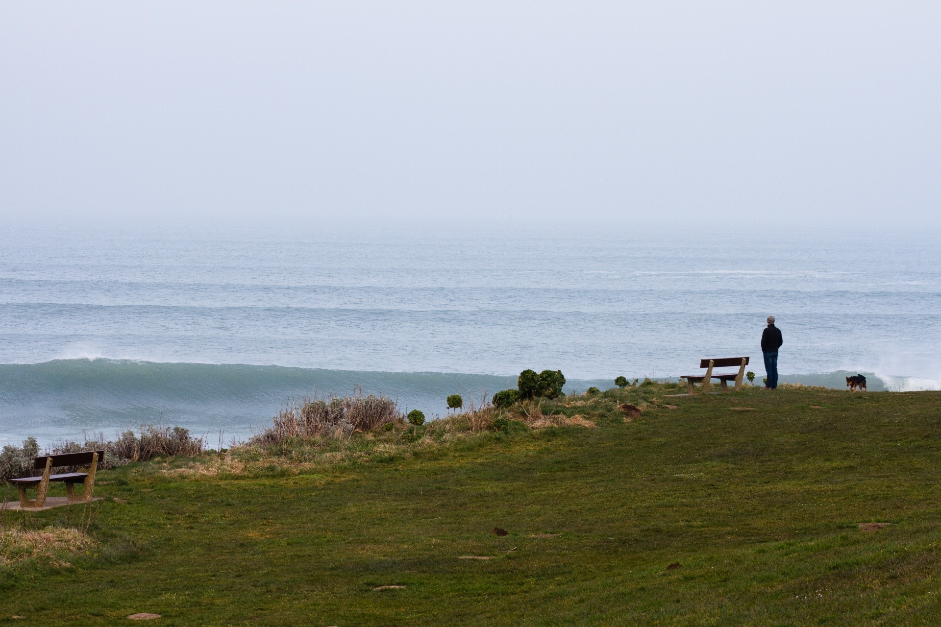 Matt Josephs's photo of Woolacombe
