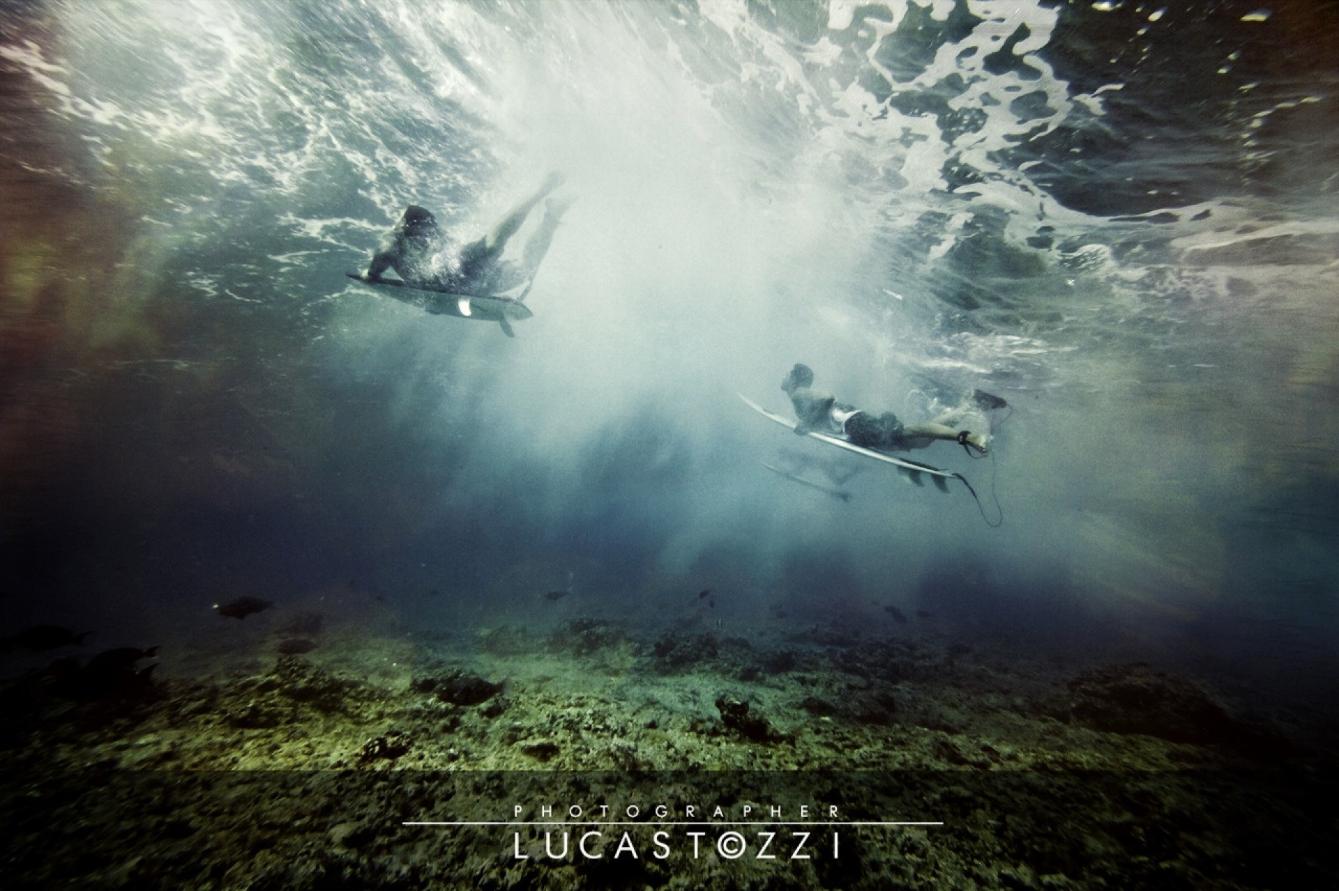lucastozzi's photo of Sultans