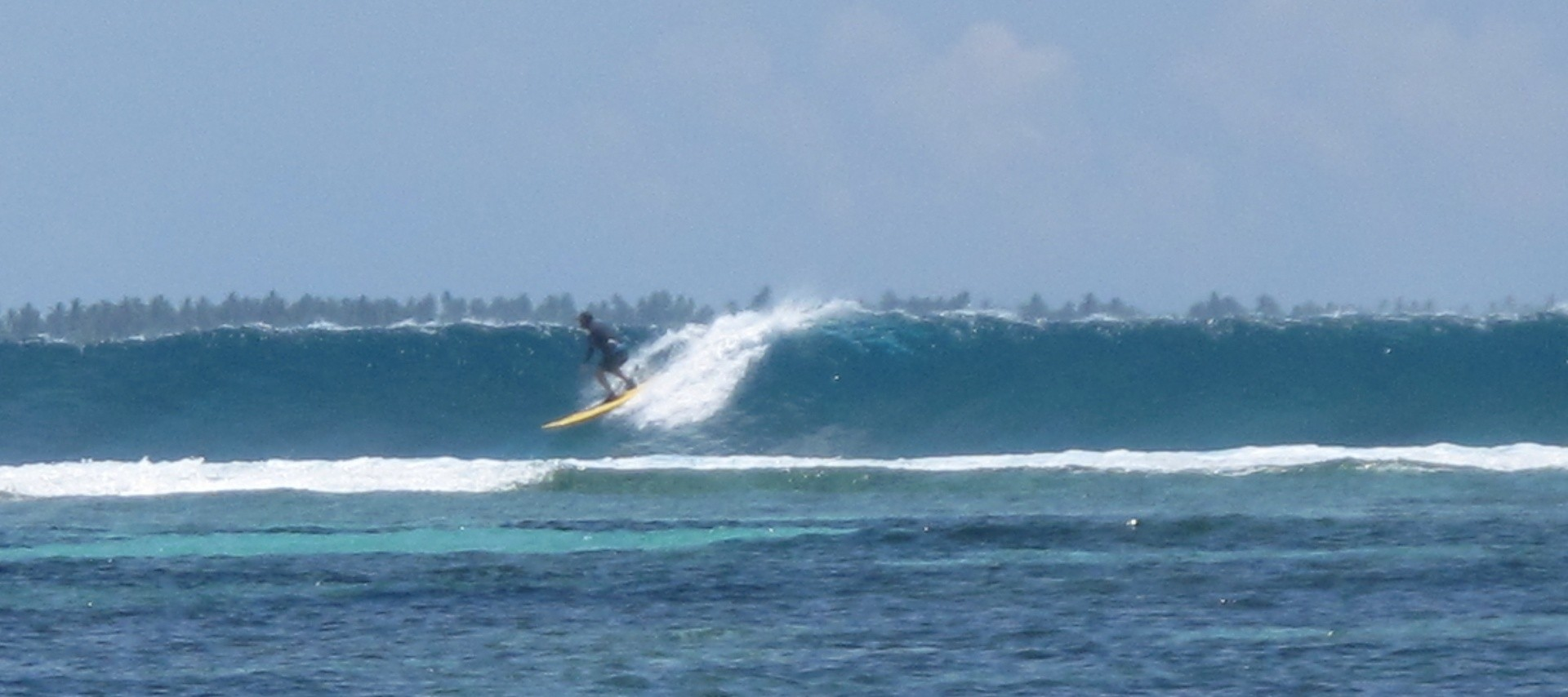 Maathey Slater's photo of Blue Bowls