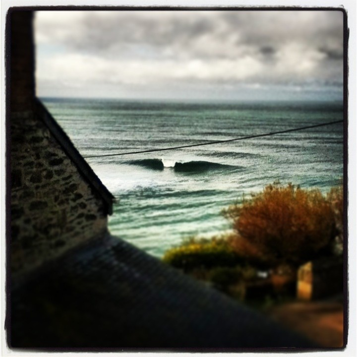 The mud ant's photo of Porthleven