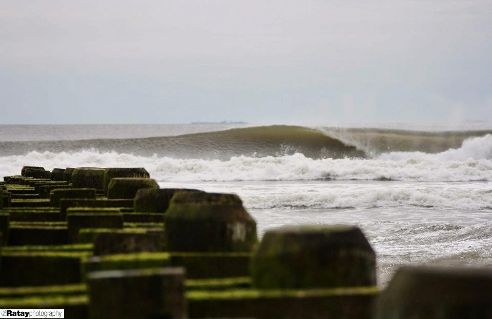 Nichole Ratay's photo of Belmar