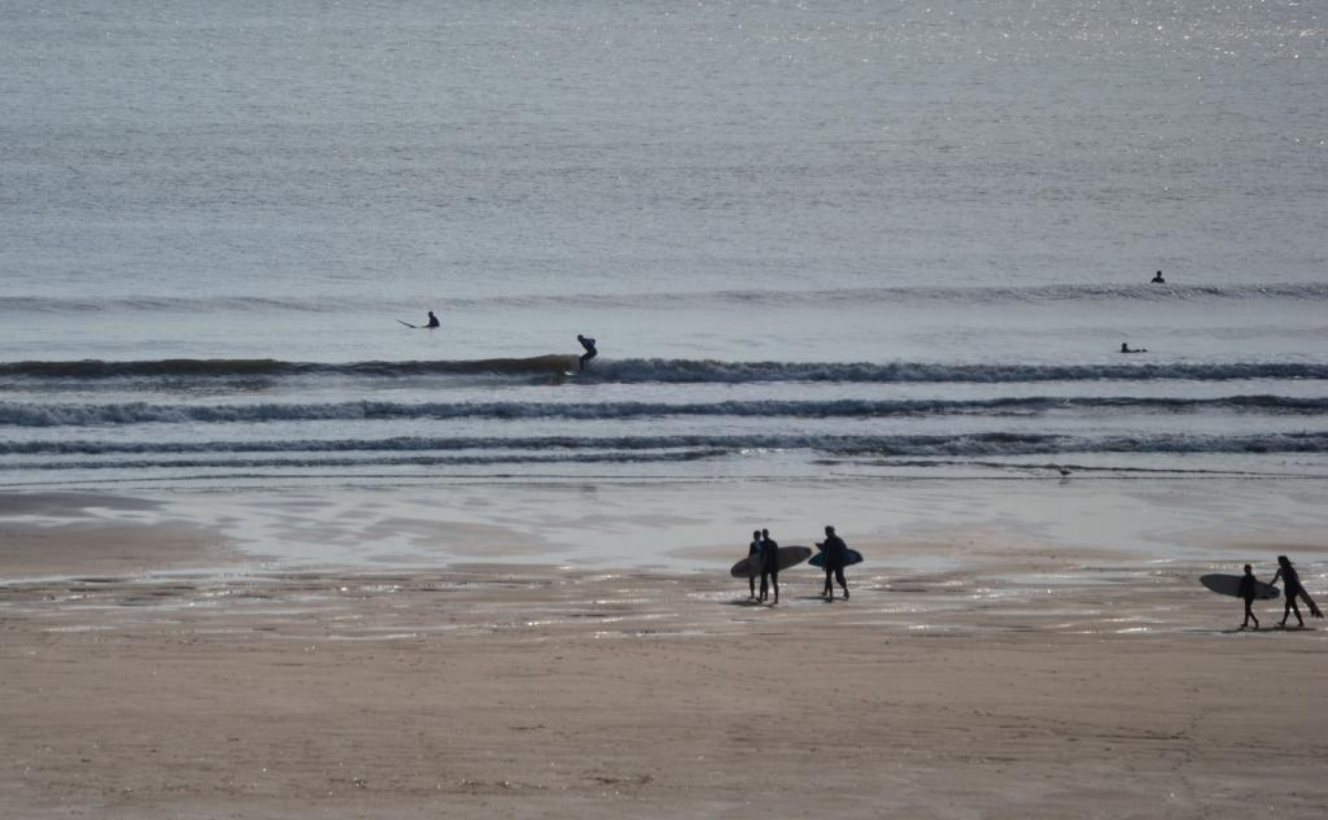 user293667's photo of Llangennith / Rhossili
