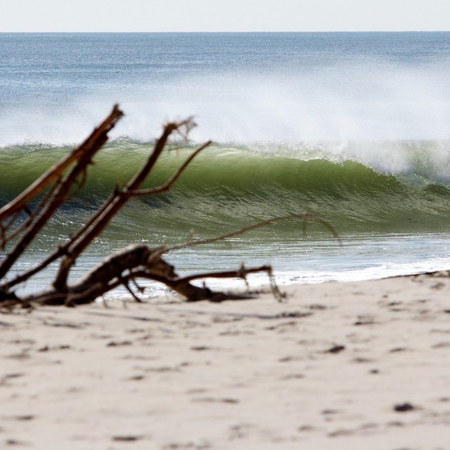Island beach state park spot guide surf forecast and for Ibsp fishing report