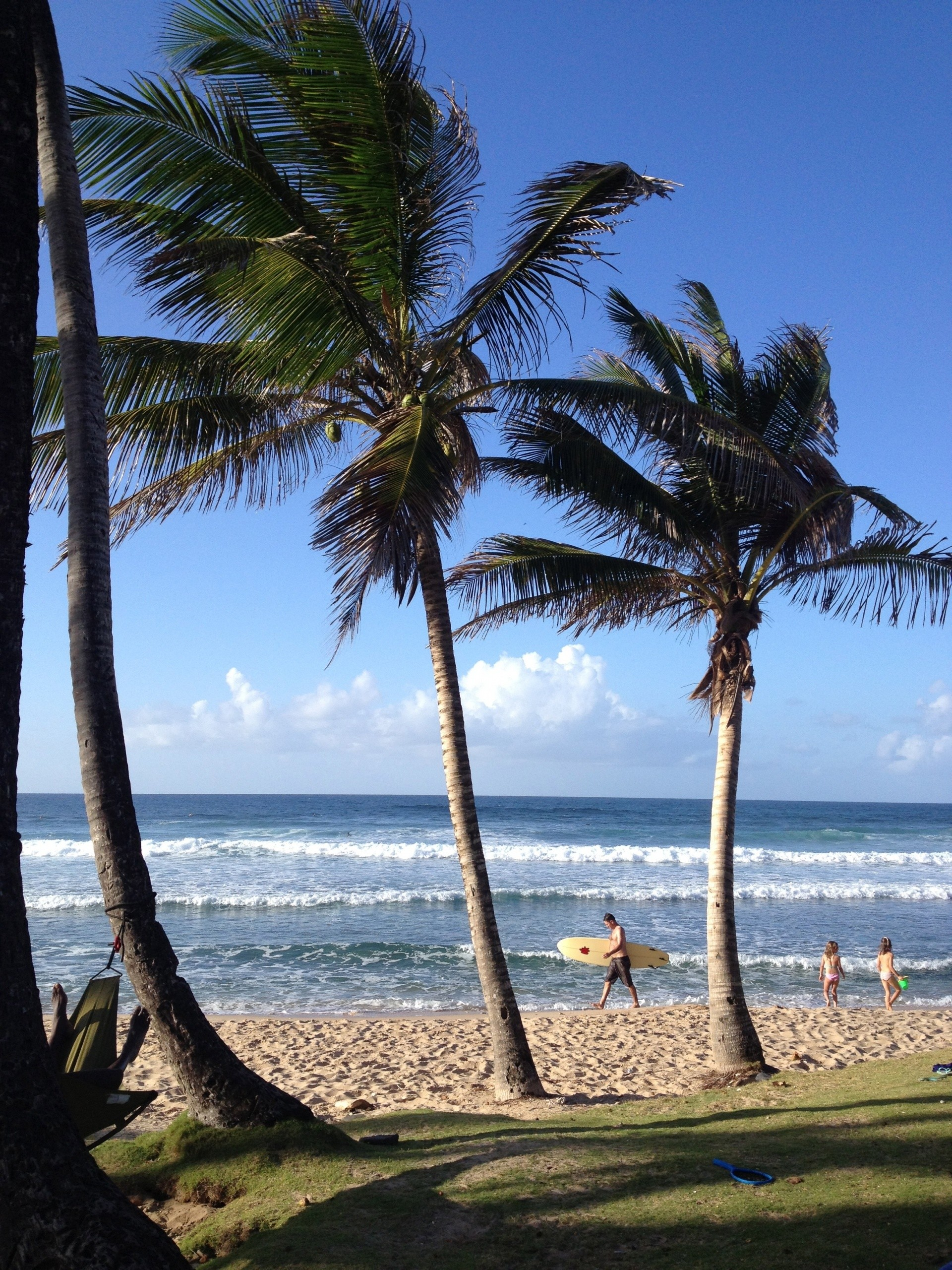 Ride The Tide Surf School Barbados's photo of Parlors