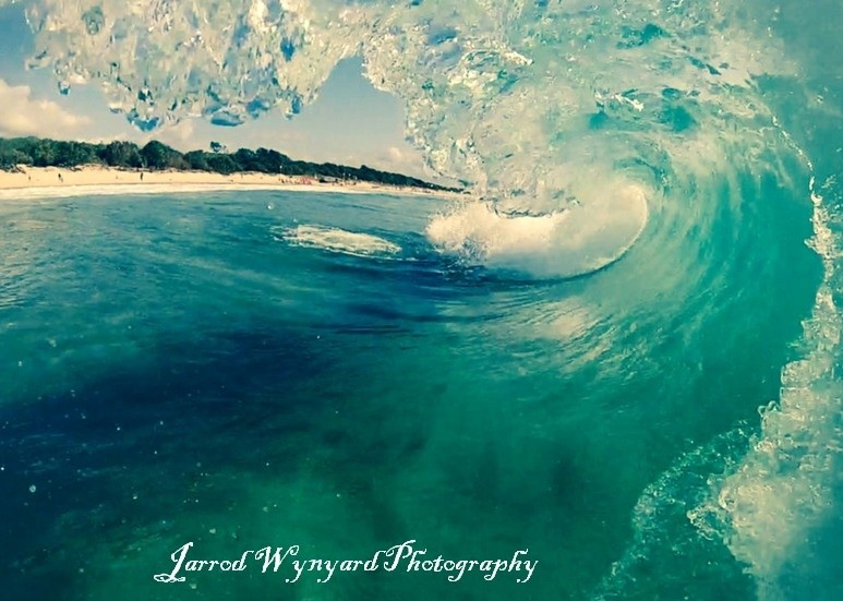 jarjarwynyard's photo of Mudjimba Island