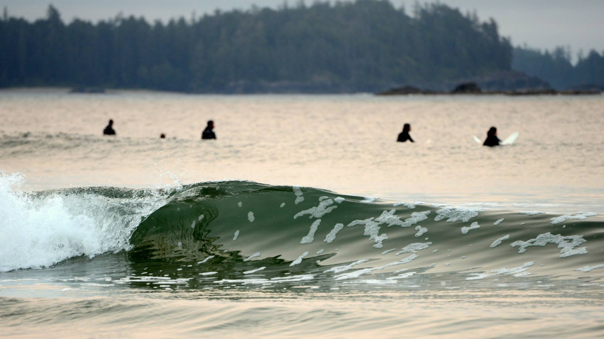 jeff3x's photo of Tofino (Cox Bay)