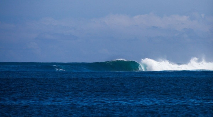 Fabian Coetzer's photo of Secret (Nias)