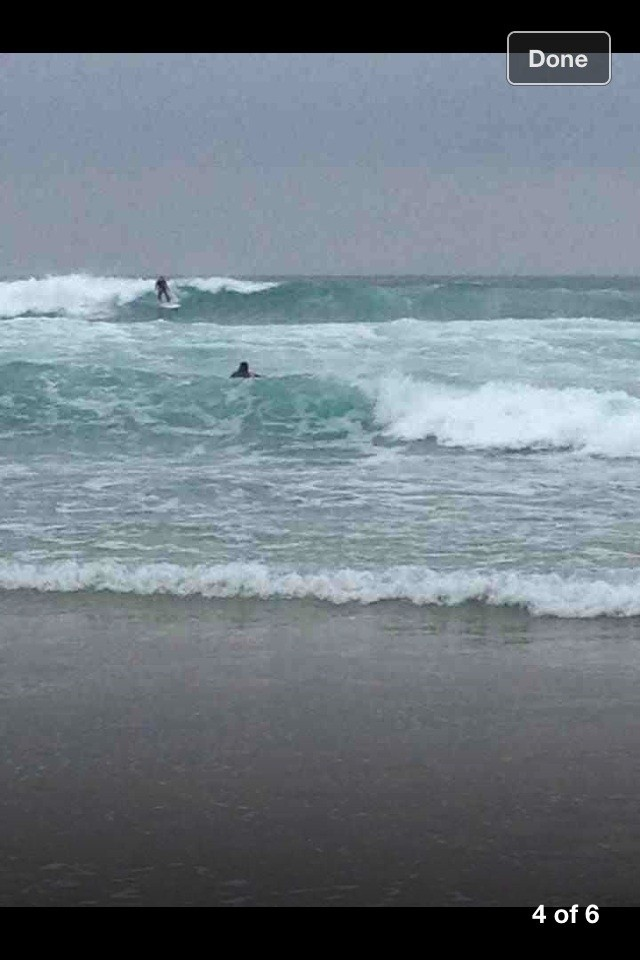 user365363's photo of Newquay - Fistral North