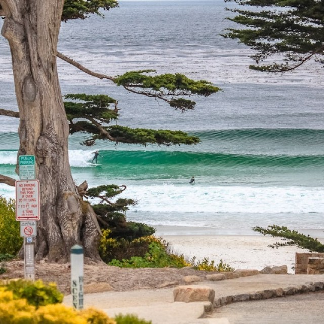 Photo of Carmel Beach