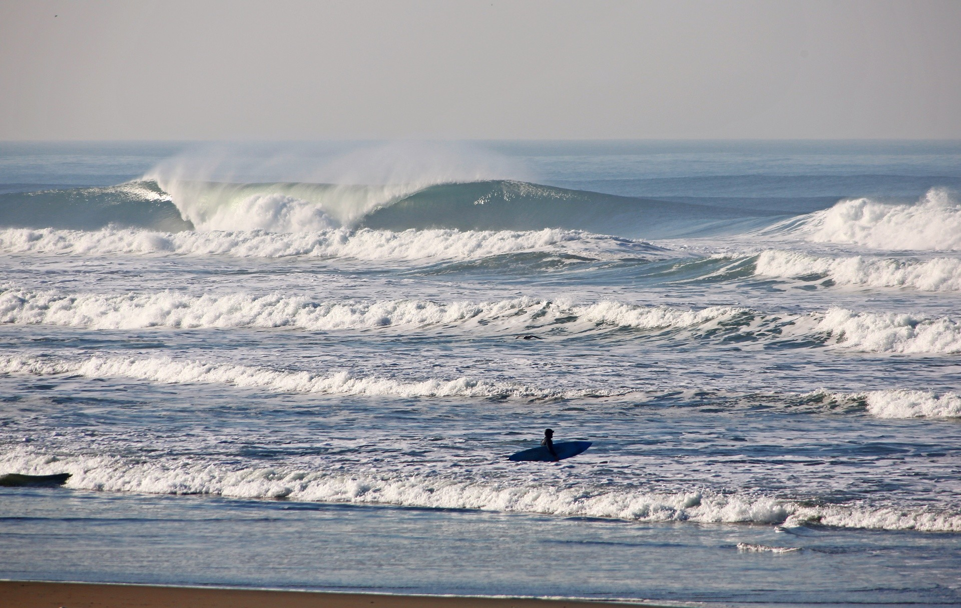 Don's photo of Ocean Beach