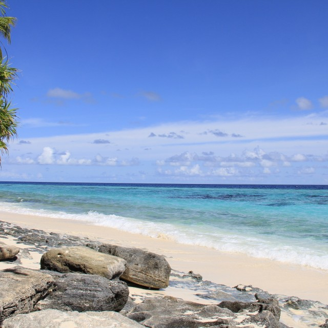 Photo of Koodhoo