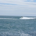 Photo of Port Alfred
