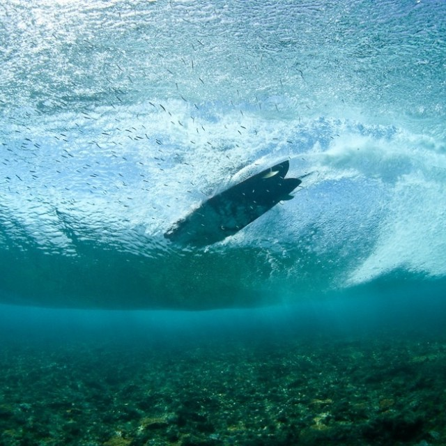 Magicseaweed Photo of the Day of T-Land