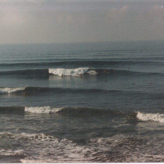 Photo of Shonan