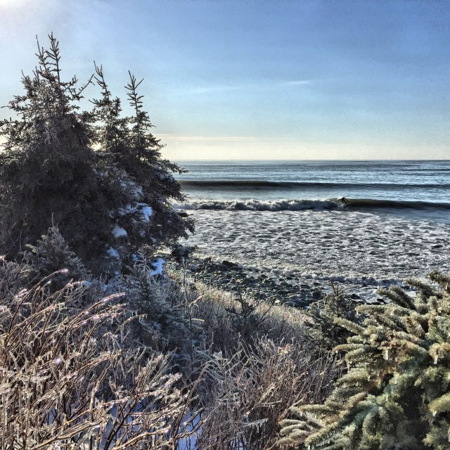 Photo of Cow Bay