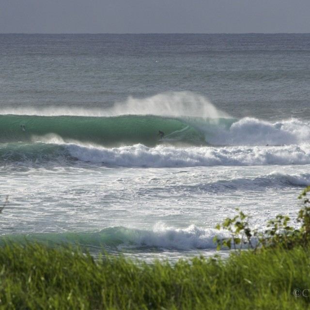 Magicseaweed Photo of the Day of Wollongong