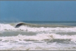 Photo of South Padre Island
