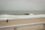 Photo of Sylt