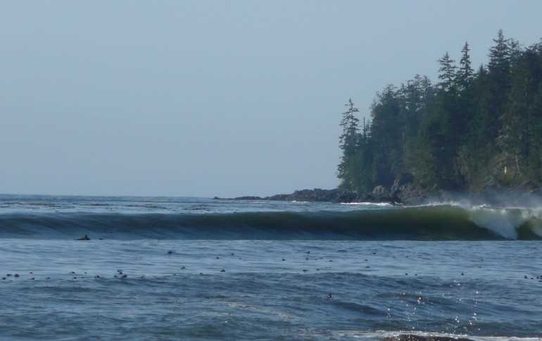 ceezee's photo of Vancouver Island South (Jordan River)