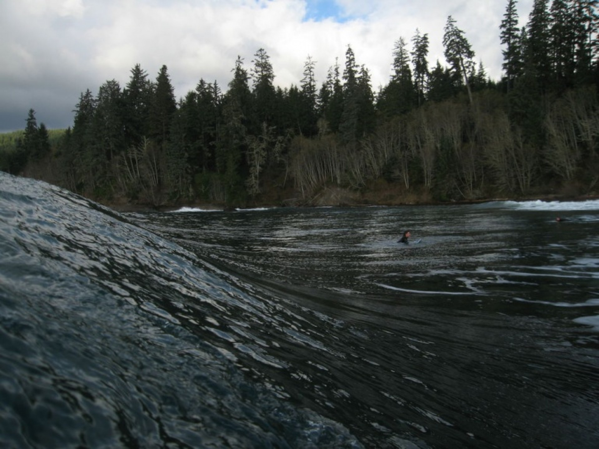 tylerz's photo of Vancouver Island South (Jordan River)