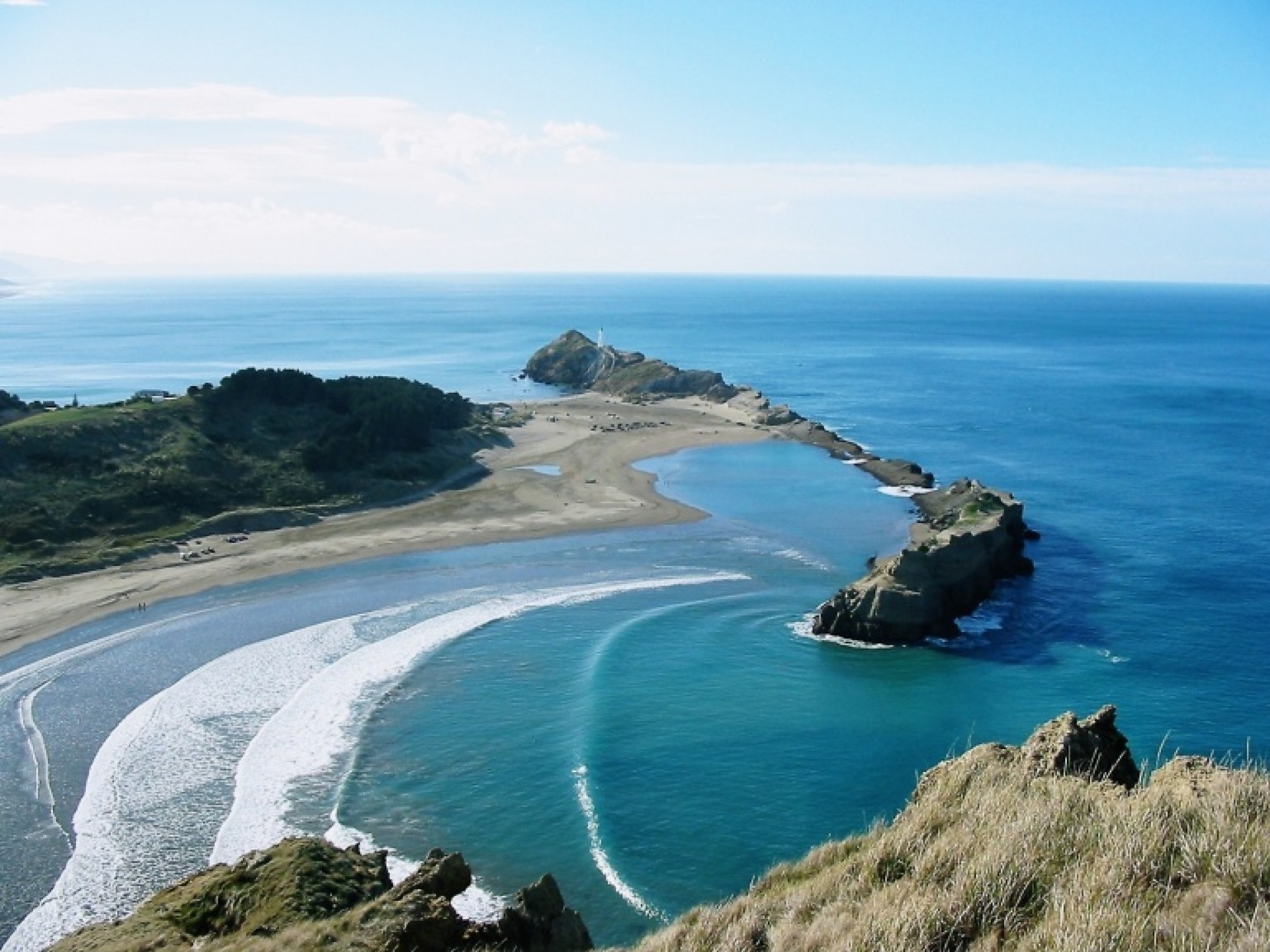 wiggy's photo of Castlepoint